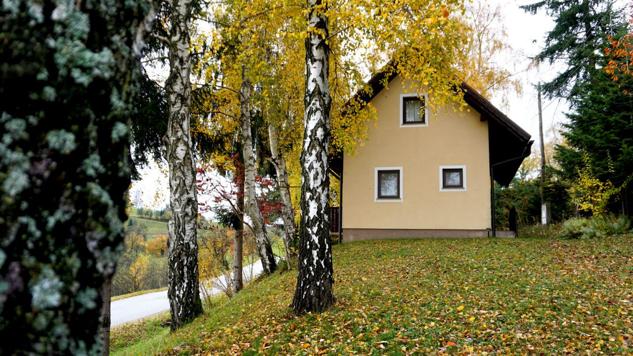 Hiša med brezami (House among birch trees)